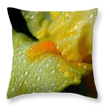 Yellow Beard Throw Pillow