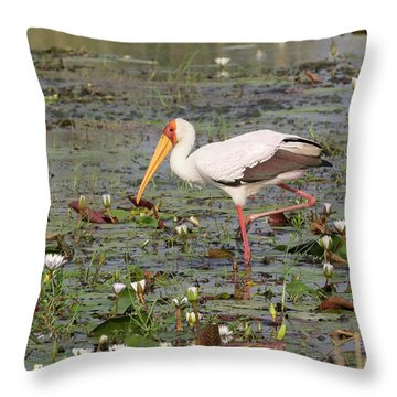 Yellow-billed Stork Mycteria Ibis Throw Pillow