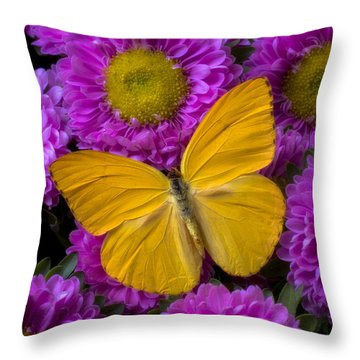 Yellow Butterfly And Pink Flowers Throw Pillow by Garry Gay