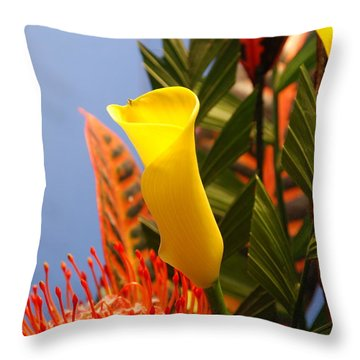 Throw Pillow featuring the photograph Yellow Calla Lilies by Jennifer Ancker
