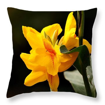 Yellow Canna Throw Pillow by Ramabhadran Thirupattur