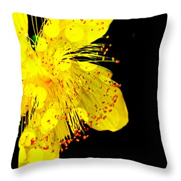 Yellow Throw Pillow by Carlee Ojeda