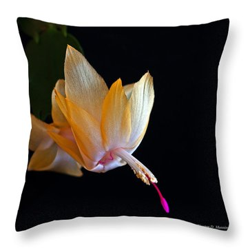 Yellow Christmas Cactus - Brazil Throw Pillow