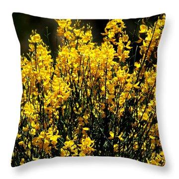 Yellow Cluster Flowers Throw Pillow by Matt Harang