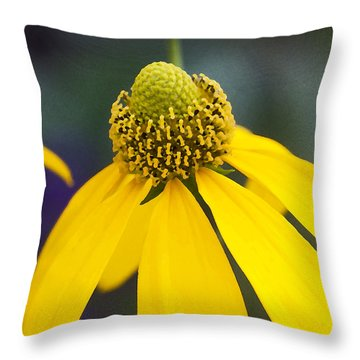 Yellow Cone Flower Rudbeckia Throw Pillow by Rich Franco
