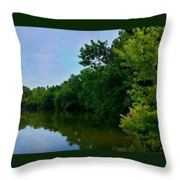 Throw Pillow featuring the photograph Yellow Creek by Chris Tarpening