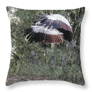 Yellow-crowned Crane Flying Throw Pillow