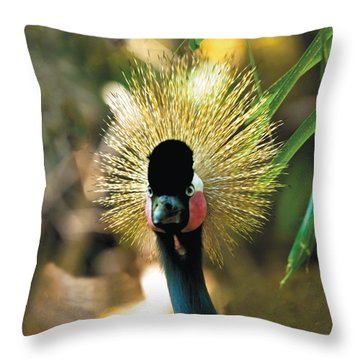 Yellow-crowned Crane Headshot Portrait Throw Pillow