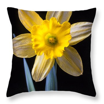 Yellow Daffodil Throw Pillow by Garry Gay