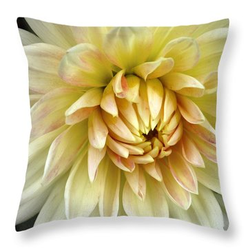 Throw Pillow featuring the photograph Yellow Dahlia by Janice Drew