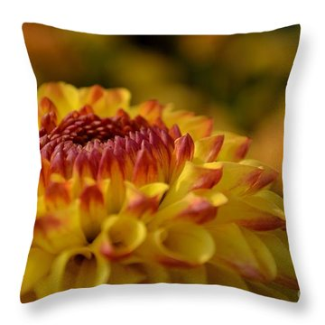 Yellow Dahlia Red Tips Throw Pillow by Scott Lyons