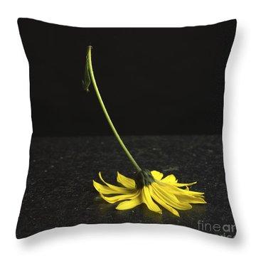 Yellow Daisy Throw Pillow by Bernard Jaubert