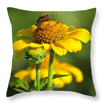 Yellow Daisy Throw Pillow