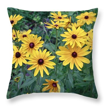Yellow Daisy Flowers #3 Throw Pillow