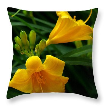 Throw Pillow featuring the photograph Yellow Daylilies by James C Thomas