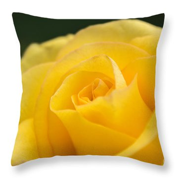 Yellow Delight Throw Pillow