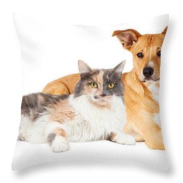 Yellow Dog And Calico Cat Throw Pillow by Susan Schmitz
