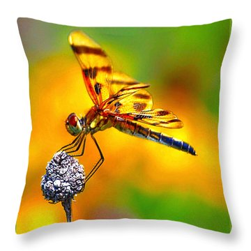 Yellow Dragon Throw Pillow