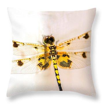 Yellow Dragonfly Pantala Flavescens Throw Pillow by Iris Richardson