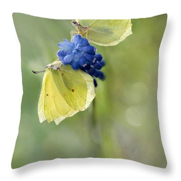 Yellow Duet Throw Pillow