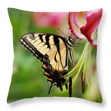 Yellow Eastern Swallowtail Butterfly Throw Pillow by Eva Kaufman