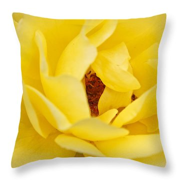 Throw Pillow featuring the photograph Yellow English Rose by Susan Leonard