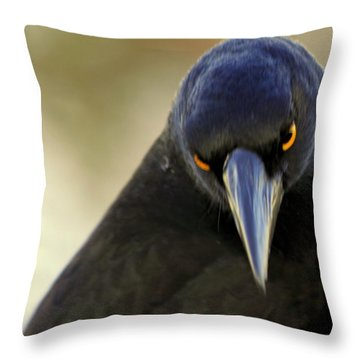 Throw Pillow featuring the photograph Yellow Eyes by Miroslava Jurcik