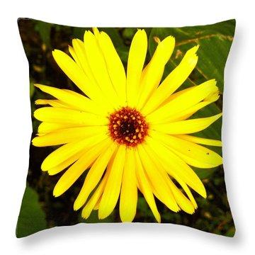 Yellow Flower 12 Throw Pillow