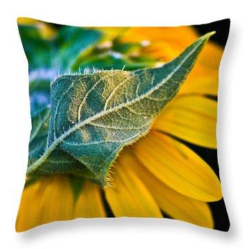 Yellow Flower Throw Pillow by Mark Alder
