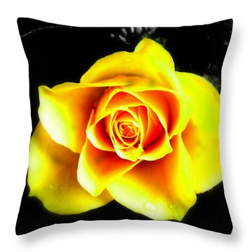 Yellow Flower On A Dark Background Throw Pillow