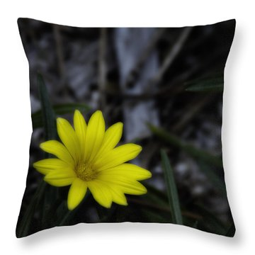 Yellow Flower Soft Focus Throw Pillow