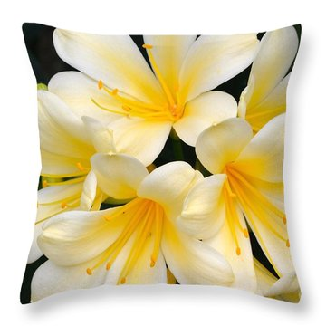 Throw Pillow featuring the photograph Clivia Yellow Flowers by Jeannie Rhode
