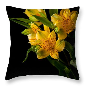 Throw Pillow featuring the photograph Yellow Flowers by Sennie Pierson