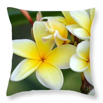 Yellow Frangipani Flowers Throw Pillow
