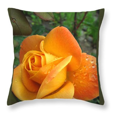 Throw Pillow featuring the photograph Yellow-gold Goddess by Brooks Garten Hauschild
