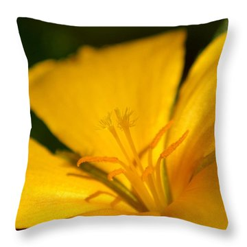 Throw Pillow featuring the photograph Yellow by Greg Allore