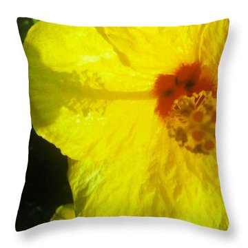 Throw Pillow featuring the photograph Yellow Hibiscus by Alohi Fujimoto