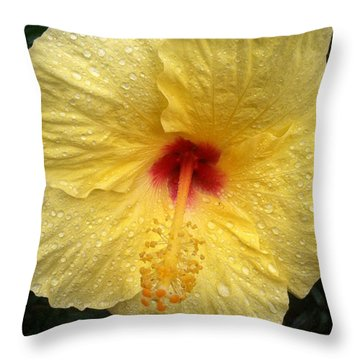 Throw Pillow featuring the photograph Yellow Hibiscus In The Rain by Alohi Fujimoto