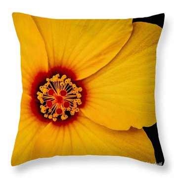 Yellow Hibuscus Too Squared Throw Pillow by TK Goforth