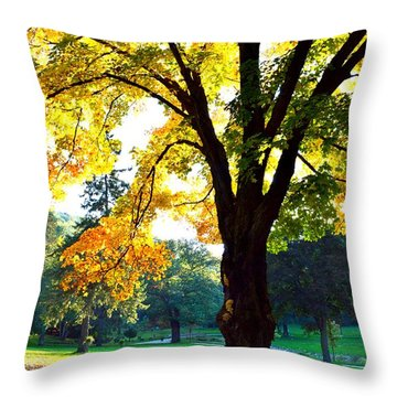Yellow Highlights Throw Pillow