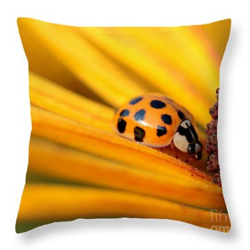 Yellow Lady - 1 Throw Pillow by Kenny Glotfelty