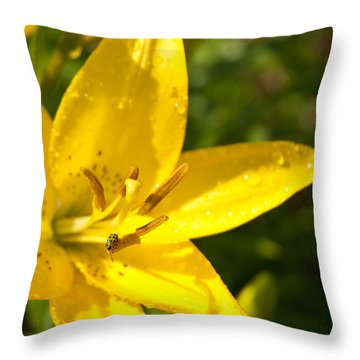 Yellow Ladybug Throw Pillow by Lena Wilhite