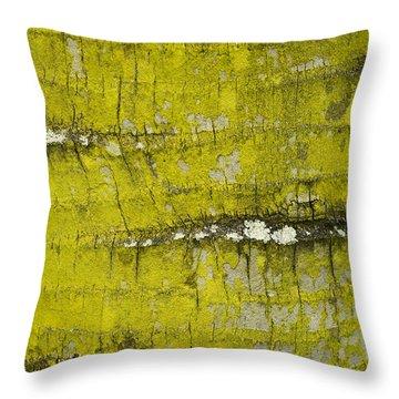 Yellow Lichen On Palm Trunk Throw Pillow