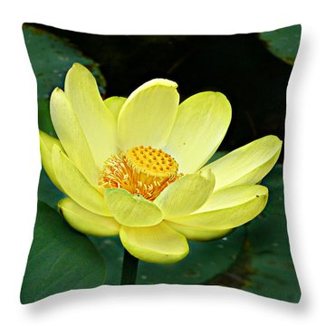 Yellow Lotus Throw Pillow by William Tanneberger