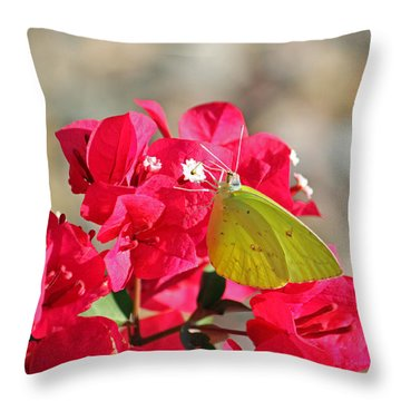 Yellow On Fuschia Throw Pillow by Suzanne Gaff