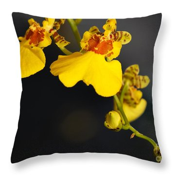 Yellow Orchid Flower Throw Pillow