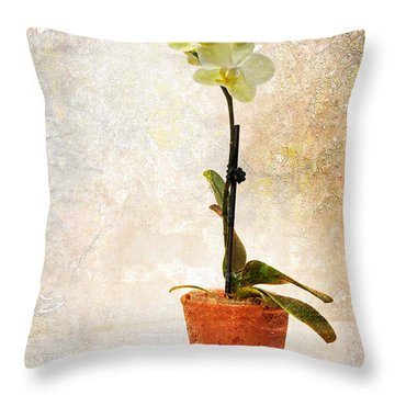 Yellow Orchid Throw Pillow by Patti Deters