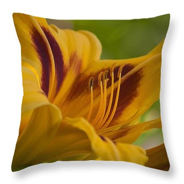 Yellow Rising Throw Pillow by Matthew Blum