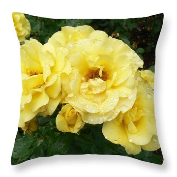 Throw Pillow featuring the photograph Yellow Rose Of Pa by Michael Porchik