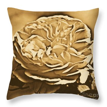 Yellow Rose Of Texas Floral Decor Square Format Rustic Digital Art Throw Pillow